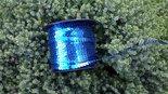 Paillettenband-blauw